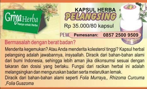 herbal pelangsing