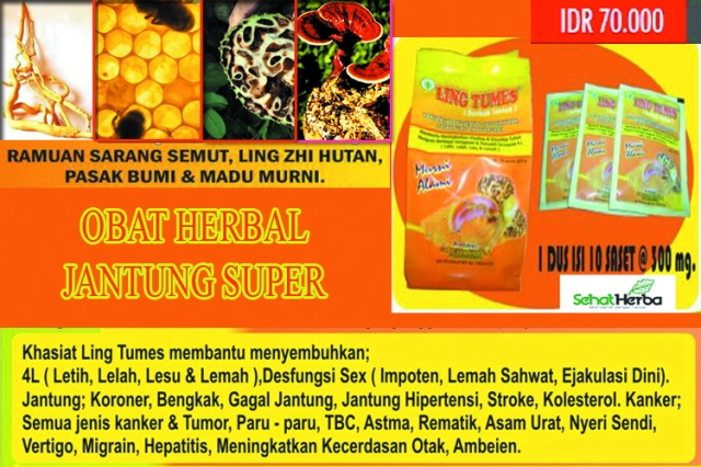 herbal rematic jantung
