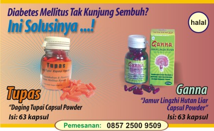 obat herbal diabetes kronis