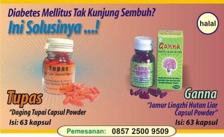 obat herbal diabetes kronis