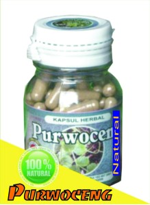 Herbal Purwoceng