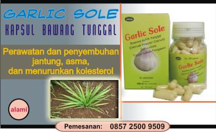 obat herbal jantung mujarab